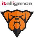 bulldogs_itelligence_Colour-background-2-(1).png